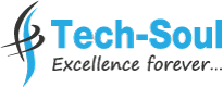 Tech-Soul Technologies Logo